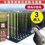防鳥刺家用塑料防鳥針空調機箱防鳥陽臺圍欄防鳥防鴿子刺