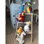 【tidy house】【現貨超取】擬真布偶鸚鵡布偶 絨毛玩偶 鸚鵡娃娃 韓國高品質絨毛 金太陽 巴丹 灰鸚鵡 鴕鳥