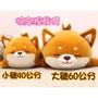 毛嚕嚕小舖~大號+小號各一~韓國瑜米糠直播柴犬玩偶娃娃抱枕