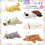 ※龍貓共和國※2018年《療癒系日本LIV HEART柴犬 巴戈 貓咪 北極熊 企鵝 紅鶴 抱枕 彈力涼感娃娃 玩偶》