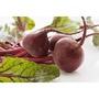 <168all> 600g 新鮮甜菜根 Fresh Garden Beet