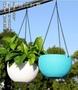 綠蘿吊蘭蘭花塑料花盆北歐花盤大號吊蘭盆盆栽盆子吊蘭掛式懸掛式
