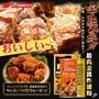 日本超人氣🏆 日清 最高金賞炸雞粉 100g 日式炸雞 唐揚雞 金賞炸雞 炸雞粉