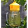 超優果實蠅捕捉器含藥水