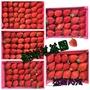 200206更新 大湖草莓 只能(冷藏宅配)   盛湖草莓園 無毒草莓 有機草莓 草莓果醬