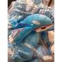 【現貨】神奇寶貝 蓋歐卡娃娃 劇場版 傳說級稀有寶可夢 40*36公分 pokemon