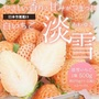 【WANG 蔬果】日本夢幻淡雪白草莓(每盒2P/約500g±10%)