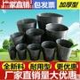 營養缽育苗袋營養袋營養杯育苗盆種植穴盆育苗盤一次性花盆塑料軟