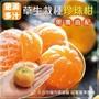 【果農直配】草生栽種珍珠柑(5斤±10%)