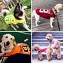 [熱賣+現貨]大狗狗衣服薄款夏季天拉布拉多大型中型犬薩摩耶寵物