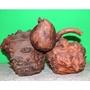 【繡印王生活館】典藏千年天然奇木藝術品  原木樹瘤 木器雕刻品(之一)