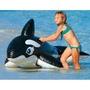 嚕嚕米❤夏天玩水必備 大人小孩都可騎 大黑鯨魚坐騎193cm*119cm 有附修補片 INTEX58561
