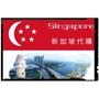 《代購》新加坡蟠龍牌雙料青龍膏60g (熱感型)保期:2024/3月