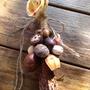 桃花心木種子串