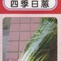 愛上種子 四季日蔥【蔬果種子】分包裝種子 約150粒/包 (夾鍊袋分裝包)