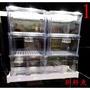 ~新鮮魚水族館~實體店面 最新版 抽屜式 上部 乾濕分離 三層滴流過濾槽 1.5尺 2尺