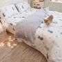 天絲 紫色貓月 (40支)棉床本舖 床包/寢具/兩用被 好窩生活節