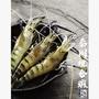 保證活泰國蝦-綜合蝦特價一斤300元