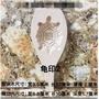 tmb_199#新品熱賣  木圓粿印龜粿印木紅殼桃粿印福雙囍壽喜字木果印月餅模具