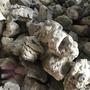 黑奇石。盆栽水族造景