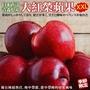 【WANG 蔬果】日本青森大紅榮蘋果XXL原箱28~32入(10.5kg)