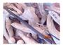 @寵物瘋@~超殺價2.1米210專殺刁魚極軟極韌老鼠尾並繼式混合纖維超輕量舒適防滑磨砂握把筏竿船竿插節竿前打竿海釣竿釣魚竿釣具