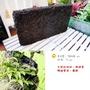 生活創意園藝【園藝用品】蛇木屑板/蛇木板(可壁掛 多肉/ 蘭花/ 蕨類 植物)好物推薦~