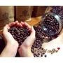 【騎士咖啡】 新幾內亞 咖啡豆 下單現烘即出貨 喝的到新鮮
