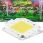 【免運】COB燈珠50W 50W LED免驅動 COB光源