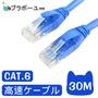 ブラボーユー Cat6超高速傳輸網路線(30米)