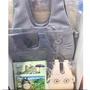 日本郵局龍貓手提袋