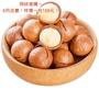 現貨直發 【三隻松鼠 】帶殼夏威夷豆 奶油味 (夏威夷果) (火山豆) 約265g
