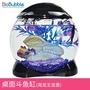 Biobubble小型圓形多功能造景辦公桌玻璃魚缸水族箱烏龜缸斗魚缸