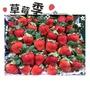 🔺新鮮大湖草莓🍓🍓一箱2.5斤🔺