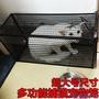 人道救助全自動捕貓籠 捉貓籠 多功能誘捕籠 尋貓神器 寵物貓籠