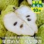 【果農直送】台東巨無霸鳳梨釋迦(原箱8~9顆/約10斤)