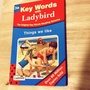 Key Words with Ladybird 3a/Things we like