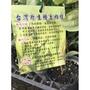 一禪種苗園-生津、甘甜、清香<台灣原生種土肉桂>3.5吋盆