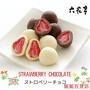 *蝦賣百貨*【順豐】日本北海道六花亭 草莓夾心白巧克力 盒裝/袋裝