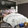 Hilton希爾頓VIP貴賓系列 100%頂級金標白駝羔羊被3kg
