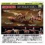 【動漫】正版 海洋堂 恐竜發掘記 恐龍擺件  暴龍翼龍 侏羅紀扭蛋
