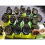 《大特賣》卡西歐 CASIO G-SHOCK 手錶 碼錶、鬧鐘、時計、日期、夜視燈 學生錶 禮物
