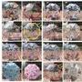 [免運費]16款可愛造型卡通傘 汪汪隊 SUPER WINGS 佩佩豬 日韓卡通兒童雨傘 小孩雨傘