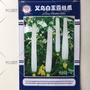 (種子花園)白皮絲瓜種子白雪玉絲瓜種子義烏白玉露絲瓜種子熱賣 廠家直銷