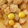 黃金莓 種子一整個15元(內種子很多)