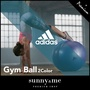 adidas Gym-ball / Anti-burst Gym-ball 65cm / yoga / Gym ball / Free Shipping / Free Gift