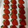 日本草莓.草莓苗.新潟 越後姬草莓種子