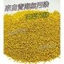💥1公斤💥來自青海無污染 油菜花粉 蜂花粉 蜂蜜
