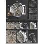 036 機械錶 鏤空雕花透視機械腕錶036 機械錶 鏤空雕花透視機械腕錶 CURREN 卡瑞恩 Winner