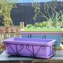 家庭陽臺屋頂種菜長方形大號加厚蔬菜塑膠花種菜盆花盆批發市場